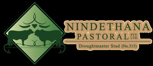 Nindethana Pastoral Co.