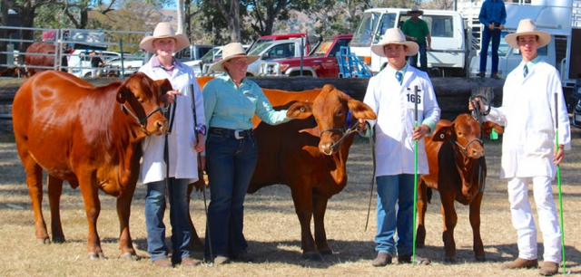 Karragarra Fronde - 1st, Dam's Progeny. With Giselle and Fontine